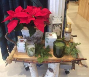 Image of holiday candles gift sets, with poinsettia